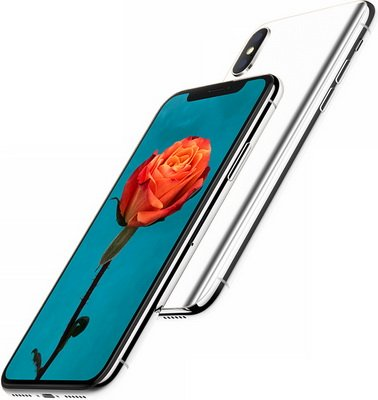 Platinum iPhone X PNG #26